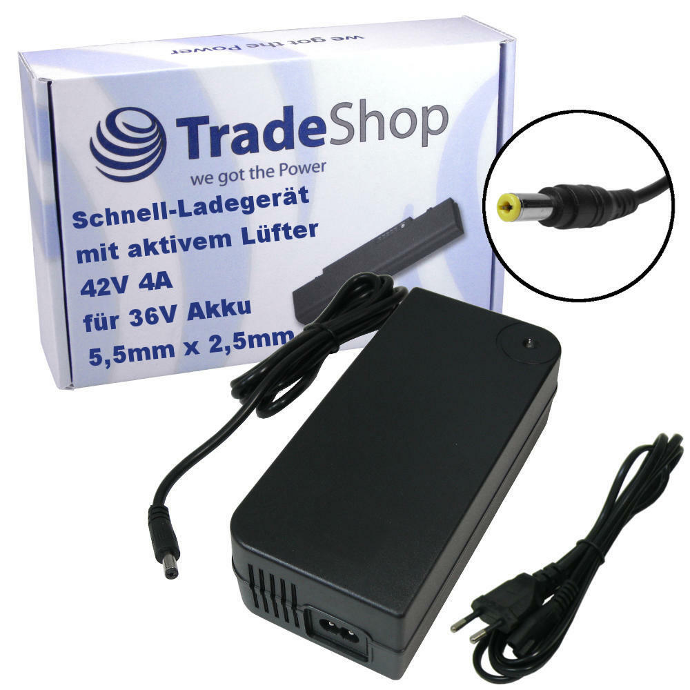 Aliuominitatore autoicatore 42v 4a per 36v batterie 5,5x2,5mm per phylion Curtis McKenzie