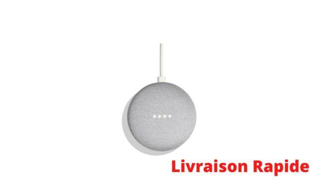 Enceinte Bluetooth Original Google Home Mini - Galet FR