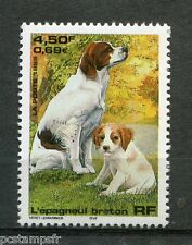 FRANCE 1999, timbre 3286, CHIEN EPAGNEUL BRETON, neuf**, DOG, VF MNH stamp