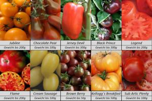 Tomatensamen-10-alte-fruehe-Sorten-Gewicht-bis-500g-Samen-Set-Paket