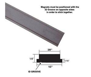 Flexible Magnetic Strip Insert For Framed Swing Shower
