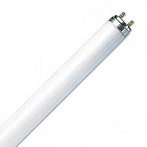 "840 4000K Cool White G5 4x 24W T5 22/"" 549mm Fluorescent Tube Strip Light Bulbs"