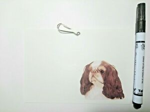 King Charles Spaniel KCS Cage Identification ID Tag for Dog Shows KC Requirement