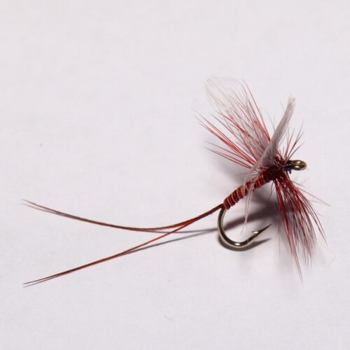 LUNNS PARTICULAR Dry Fly Trout fly Fishing flies by Dragonflies