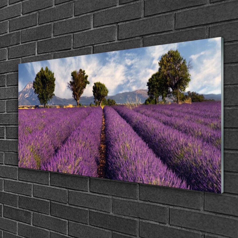 Image sur verre Tableau Impression 100x50 Nature Prairie Arbres