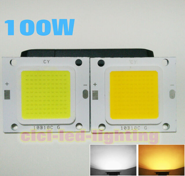 High Power LED Chip Bulb COB LED Driver Supply Waterproof 20/30/50/70/100W