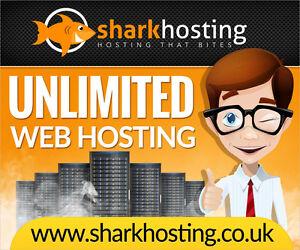 Unlimited 12 Months Website Web Hosting UK