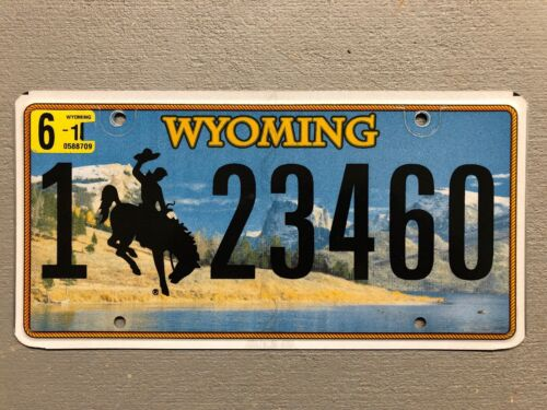 MOUNTAINS WYOMING LICENSE PLATE BUCKING BRONCO LAKE