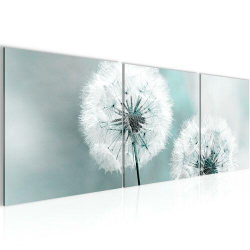 WANDBILDER XXL BILDER Blumen Pusteblume VLIES LEINWAND BILD KUNSTDRUCK 207134P