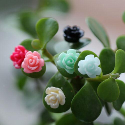 20x Miniature Fairy Garden Micro Landscape Dollhouse Bonsai Decor Flowers S