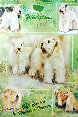 Soft Coated Wheaten Dog Gift Present Wrap