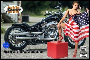 MCJ-Royal-Cigar-Auspuff-Exhaust-fuer-Harley-Modelle-bis-Bj-2016-mit-EG-BE