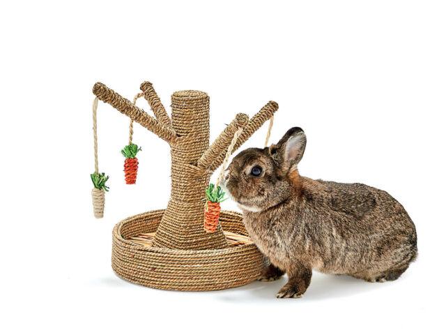 Rosewood Boredom Breaker Bunny Fun Tree Rabbit Toy