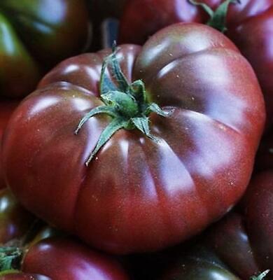100 Pcs Seeds Giant Tomato Beefsteak Heirloom Organic Fresh Vegetables Garden