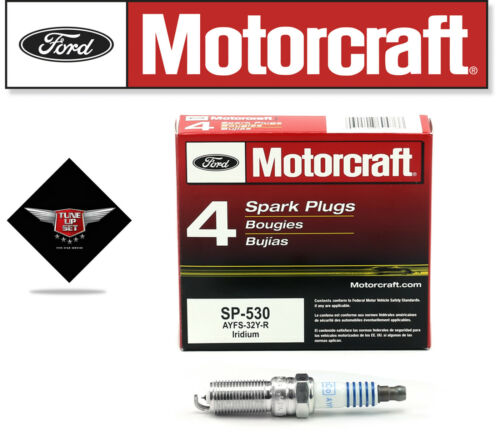 Tune Up Kit 2009-2012 Ford Escape 2.5L L4 DG541 SP530 KCV226 EV285 FA1696 FL910S
