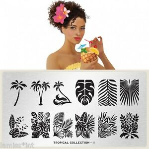 MoYou-London-TROPICAL-11-Collection-Stamping-Schablone-Blaetter-Palme