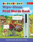 Wipe Clean First Words Book: Wipe-Clean Scenes with Words to Trace by Lisa Holt, Lyn Wendon (Paperback, 2014)