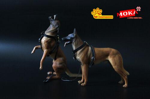 1:6 SCALA animali giocattoli pawfashion 1//6 belga Malinois Figura Resina NUOVO MODELLO