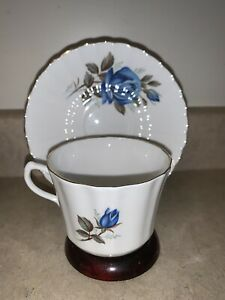 Vintage Blue Roses Floral Bone China Teacup & Saucer, Made In England