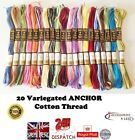 20 Variegated Anchor cotton cross stitch thread embroidery Floss basic colours