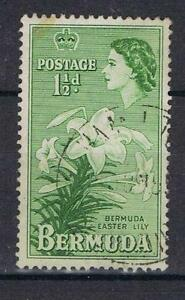 Bermuda-1953-1-d-Green-Easter-Lily-SG-137-Used