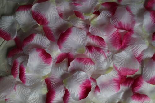 blanc rose 1000 artificielle Soyeux Rose Pétales