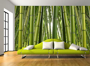Details about Nature Green Bamboo Trees Plant Wall Mural Photo Wallpaper  GIANT WALL DECOR