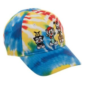 WARNER BROS ANIMANIACS TIE DYE DAD HAT SLOUCH CURVED BILL CAP ... 0d2f46d4da4f