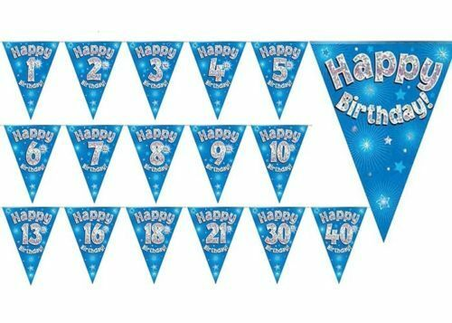10TH BIRTHDAY PARTY BUNTING BANNER BLUE HOLOGRAPHIC 11 FLAGS 3.9M