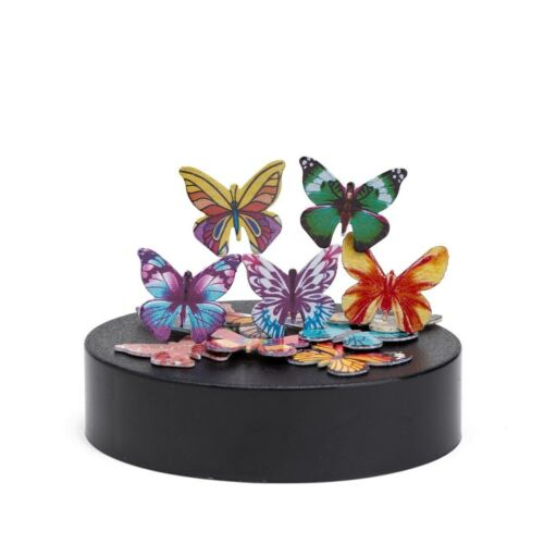 THY COLLECTIBLES Magnetic Sculpture Desk Toy For Intelligence Development...