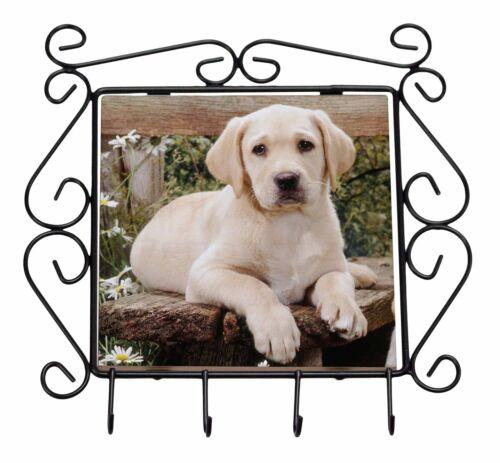 Yellow Labrador Puppy Wrought Iron Key Holder Hooks Christmas Gift AD-L71KH