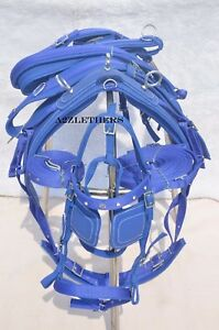 BLUE-NYLON-DRIVING-HARNESS-FOR-SINGLE-HORSE-with-diamonte-browband-in-bridle