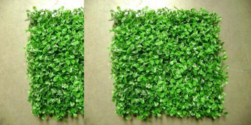 Colour Change Mini Cooper S CHALLENGE 210 Graphic JCW F56