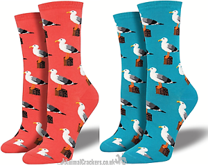 Womens Socksmith Gull-able socks nautical design One Size Seagull lover gift