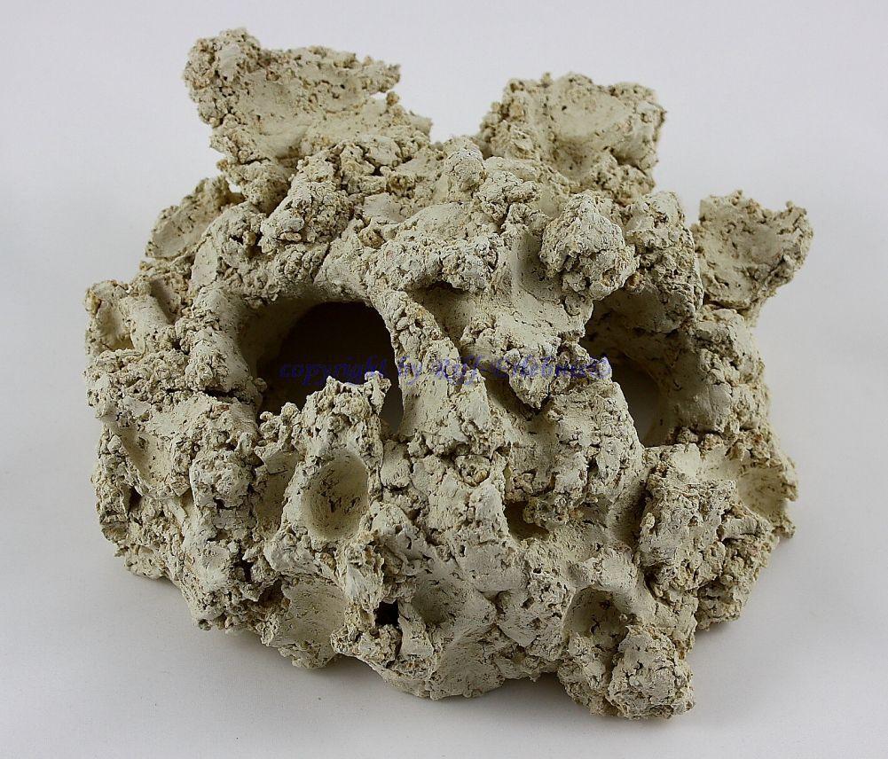 Riffhöhle 2 Foro Barriera Corallina in Ceramica Arka 15cm Decorazione Riff Tane