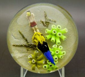 JIM-D-039-ONOFRIO-Snorkeler-Big-Fish-Underwater-Glass-Paperweight-Apr-2-5-034-H-x-3-5-034-W