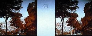 Platte Foto Stereoskopische Fotografie Schluchten Des Tarn Um 1930