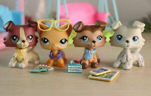 Authentic Littlest Pet Shop lps Collie 3pcs lps 893 1262 67 with lps Accessories