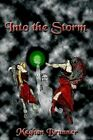 Into The Storm 9781418446574 by Meghan Brunner Hardcover