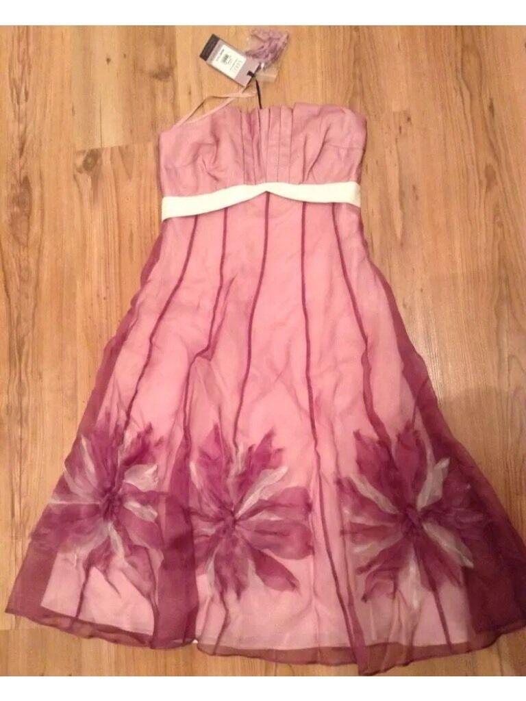 BNWT  Coast  Size 8 Gable Organza Dress (36 EU) Wedding Bridesmaids  New