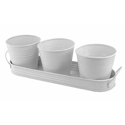 PLAID 3 Metal Planting Pots In Tray - White