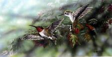 "Gamini Ratnavira ""Ruby Throated Hummingbirds"" SN Print 14"" x 7"""