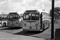 Peter Sheffield Cleethorpes LFR571 Bus Photo