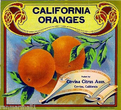 Covina Daisy #3 Orange Citrus Crate Label Art Print