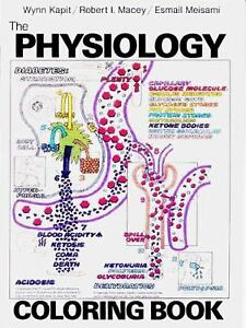 Image Is Loading Physiology Coloring Book By Robert I Macey Wynn