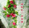 8Ft Fake Rose Garland Silk Flower Rattan Vine Ivy Home Wedding Garden Decor Q88
