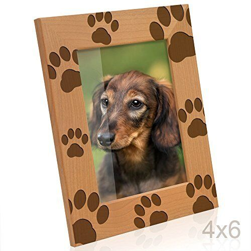 Beautiful Doggie Paw Prints Wooden Picture Frame Holds a 4  X 6  greenical Photo