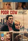 Poor Cow DVD 1967 Carol White Terence Stamp Ken Loach