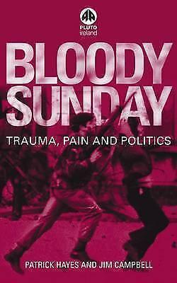 1 of 1 - USED (GD) Bloody Sunday: Trauma, Pain and Politics (Contemporary Irish Studies)