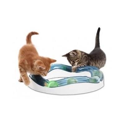 Cat Circuit Speed Fun Exercise Indoor Cats Toy Kitten Play Ball Pet